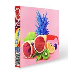 beludru merah merah musim panas musim panas mini album foto cd buku