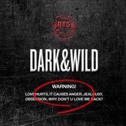 BTS tamsi laukinė 1-oji albumo cd 120p fotografijų knyga k uždaryta