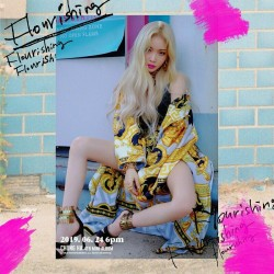 chungha flourishing 4th mini album cd booklet post photo card