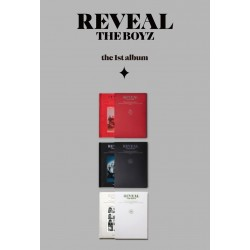the boyz reveal 1st album