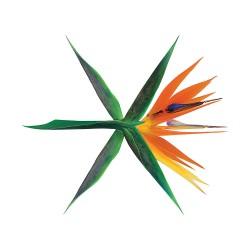 exo perang 4 album korean ver acak